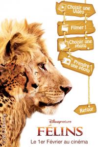 IMG 1145 200x300 MyFélins, une application amusante dédiée au nouveau film de Disney (Gratuit)