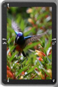 TapShot Les bons plans de lApp Store ce mercredi 8 février 2012