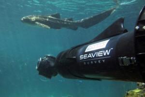google 300x200 Explorez les océans grâce à Google « Street View Underwater »