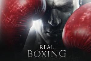 IMG 2324 Test de Real Boxing : Un KO qui savère être une sacrée claque ! (3,59€)