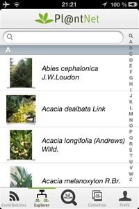 IMG 0312 Lapplication gratuite du Jour : PlantNet   Le Shazam des plantes !