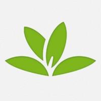 PlantNet Lapplication gratuite du Jour : PlantNet   Le Shazam des plantes !