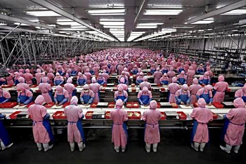 pegatron usine 500x333 La moitié de la production diPhone 6 pour Pegatron ?