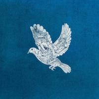 Coldplay Ghost Stories iTunes : le dernier album de Coldplay Ghost Stories en écoute gratuite